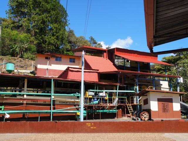 パナマ, コーヒー, 農園
