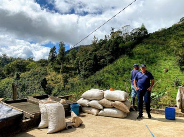 ニカラグア, コーヒー, 農園