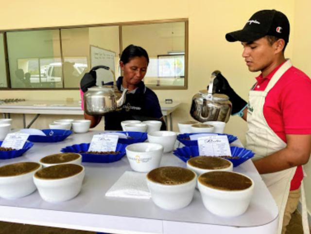 ニカラグア, コーヒー