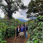 パナマ, CREATIVE COFFEE DISTRICT, panama